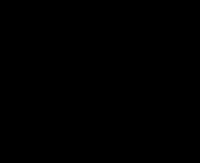 Emblema dei Nizariti. Calligrafia sciita che simboleggia la 'Tigre di Dio'.