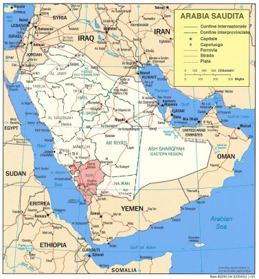 Use of dental clinics and oral hygiene practices in the Kingdom of Saudi Arabia, 2013