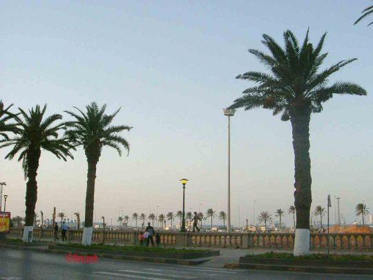 lungomare Tripoli copy